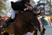 Equine world / Show jumping, eventing, dressage and vaulting pictures.