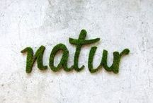 typography.