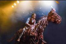 War Horse / Eens in de zoveel jaren, vindt er een ontmoeting plaats waarover generaties lang verteld wordt. Een ontmoeting die ogen opent, vijanden dichter bij elkaar brengt en vreemden met elkaar verbindt.  www.warhorse.nl