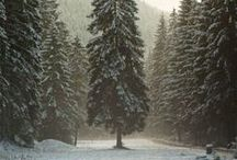 """WINTERtime / Invierno, hivern, hiver, winter... """"home sweet home"""""""