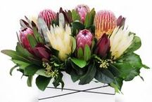 Flowers by Urban Flower / Our every day basic flower range!