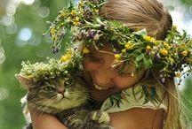 gatitos ....y mas / Gatos...me encantan