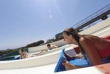 Les nostres atraccions / Les millors atraccions aquàtiques només les trobaràs a l'Aquadiver.