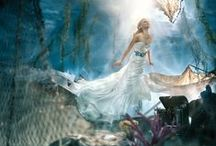 """Alfred Angelo Disney Fairy Tale / At Enchanted Bridal Boutique, we carry a wide variety of Alfred Angelo designs, including the Disney Fairy Tale gowns. Styles and sizes that are perfect for any bride who wants their """"Happily Ever After!"""""""