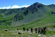 Trans Kaçkar Turu / Trans Kaçkar Turu dağ, doğa, yayla bir arada. En fazla 14 kişilik gruplarla trans kaçkar turları. Bu turda; Kaçkarların güney eteklerinden kuzey eteklerine uzanan, yöre halkının yaylalara çıkmak için geçtiği yolları izleyecek, doğanın tüm güzelliğinin sergilendiği yaylalara, oradan da gittikçe yükselerek bu sıra dağların en yüksek zirvesi olan 3937 m'ye ulaşacaksınız.