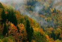 Küre Dağları Valla Kanyonu Daday Turu