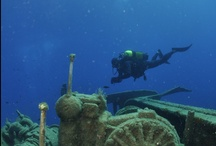 Scuba diving in Andros / Discover Andros island underwater!!