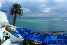 Tunus Turu / Tunus turu Deep Nature farkıyla... Her gün hareket ile Tunus turu paketleri. Tunus turlarında deneyimli ekibimizle keyifli bir Tunus turu. Türk vatandaşlarına vize yok! Sahra Çölü'nün Akdeniz'e açılan kapısı Tunus, güzel kokulu yaseminleri, mavi pervazlı beyaz evleriyle şekillenen sakin mimarisi, 1200 kilometrelik sahil şeridi, tarihi ve kültürel değerleriyle sizleri bekliyor...