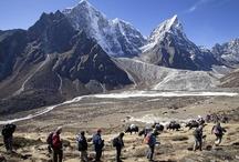 Everest Ana Kamp Trekking Turu / Everest Ana Kamp Trekking Turu. Chitwan Milli Parkı'nda Fil Safari, Jungle Safari ve Kano Safari programları dahil 16 günlük program. Dünyanın zirvesinin yamaçlarında unutulmaz bir deneyim ve eşsiz manzaralar... Profesyonel ekibimizle Everest turları sizleri bekliyor.