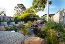 Carnegie, Vic / This suburban sanctuary was designed to encourage local wildlife to visit the garden, and as a place for the owners to relax and entertain.  Inspired by our Best in Show 'HABITAT' creation at the 2009 Melbourne International Flower & Garden Show, this landscape also required areas for organic, home-grown vegetables and herbs; and creating a sustainable garden with a low water requirement.
