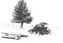 Hængegran & danske træer