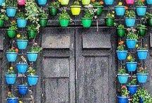 Bahçece... / Bahçe bitkileri,bahçe peysajı ve bahçe bilgileri