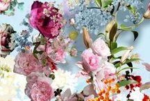 Flores y frutas / flowers and fruits / fleurs et fruits