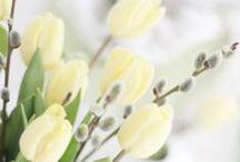 INSPIRATIONS | Spring