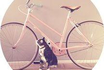 Bici~cleta