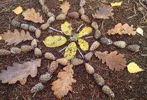 Herfst / Herfst...zoveel moois in de natuur... zoveel leuks om te doen...herfst!