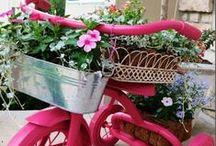 For the Urban Garden / {urban garden} {small space gardening} {balcony garden} {container gardening}