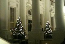 White House Christmas's / Christmas Through The Years / by Cynthia Cummings