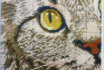 Cross stitch: Cats