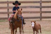 Children and Kids  Horse Corral / Children and Kids with Horses