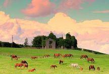 Irish horses / All things Irish