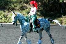 Costume Horses