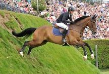 Eventing with horses / Events and competitions with Horses and Horse riders.