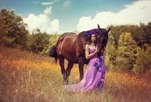 Horse Fashion and Photography
