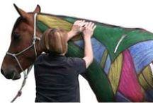 Body Work for Horses /  Horse Body Work,  horseMessage,