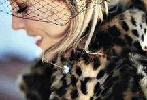 Leopard Grr!