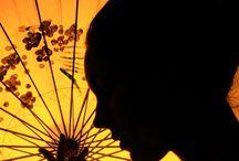 Silhouettes/shadows / by Karen Burkholder