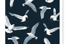 BIRDS / cos I like em birds