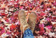 ⇨ 가을 ⇦