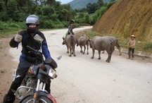 World on Two Wheels / Motosikletle Dünya Turu