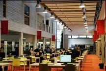 BU Croix-Rousse / Bibliothèque Universitaire Éducation