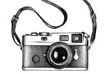 Photography / Inspirational beauty