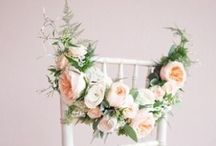 Wedding... Chair Decoration / Alternatives to seat covers for wedding chairs