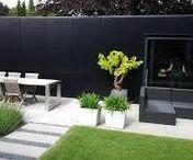 Garden - Tuin