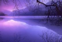 I just love PURPLE ..... / Purple purple and again purple!!!!!