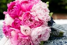 Wedding color ~ pink