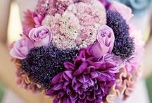 Wedding color ~ purple