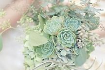 Wedding color ~ mint