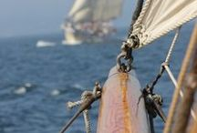Barques, Bateaux & Navires !