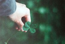 Holiday-St. Patrick's Day / by Louise Vickers