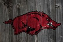 Razorbacks / by Ryan Thomason