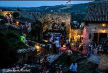 Feste Medievali 2014 / Ecco che cosa Vi siete persi delle Feste Medievali 2014!