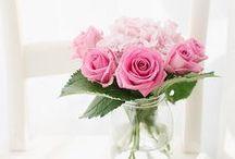 Fiori- Flowers