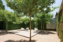 Private open space / Landscape design courtyards and private gardens