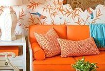 Orange You Glad I Didn't Say Orange? / by Wayfair.com