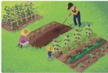 Gardening / by Renee Colden